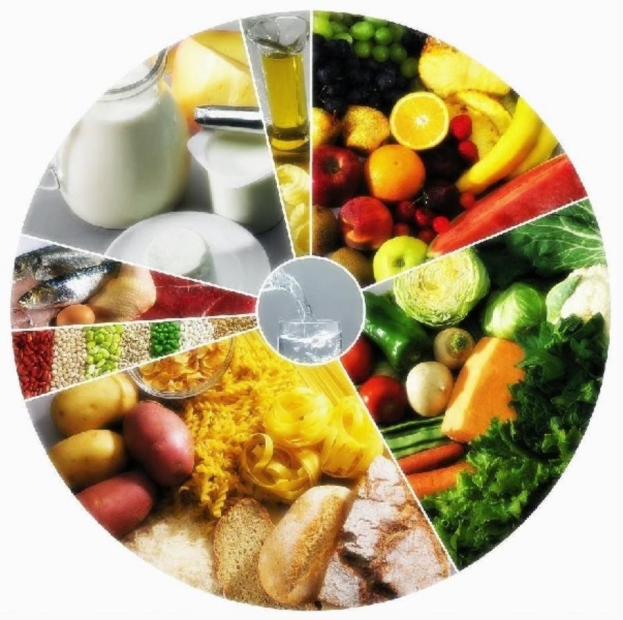 roda dos alimentos mediterr nica em v deo